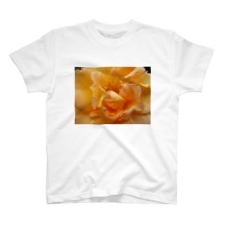 幸せの道しるべ T-shirts