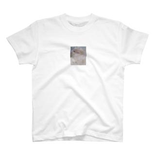 サテンハムスターのモフ🐹 T-shirts