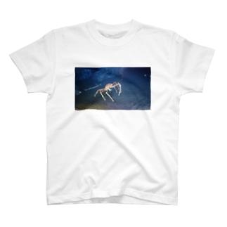 蟹 T-shirts