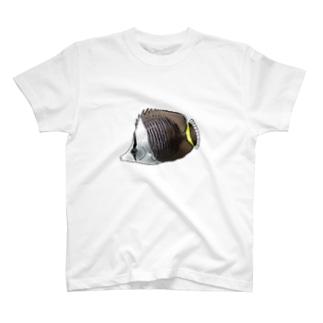 ホワイトフェイスバタフライフィッシュ T-shirts