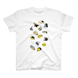 チョウチョウウオ大集合 T-shirts