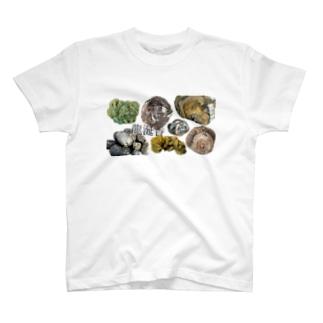龍涎香(マッコウクジラの結石) T-shirts