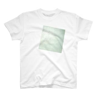 白の中の白 T-shirts