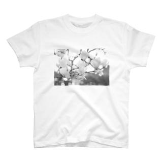 モノクロ×ハクモクレン T-shirts