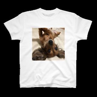 bunanchangのテコラ T-shirts