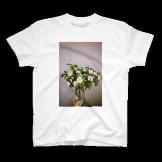マツイショップのA T-shirts
