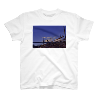ha_naの烏 T-shirts