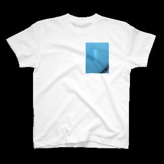 galah_addの予定変更 T-shirts