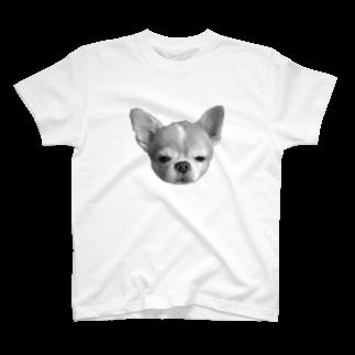 sjj1230のチワワ少しショック受けてる系 T-shirts