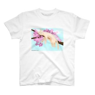 桜ねんねsky T-shirts