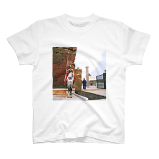 モロッコ:ムハンマド五世廟の衛兵 Morocco: Horse guard of Mausoleum of Mohammed V / Rabat T-shirts