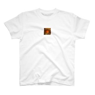 ぎゅうどん T-shirts
