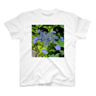 宇佐美アジサイ T-shirts