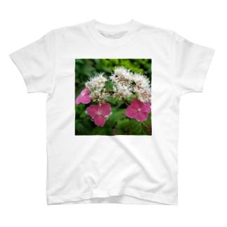 桃花ヤマアジサイ T-shirts