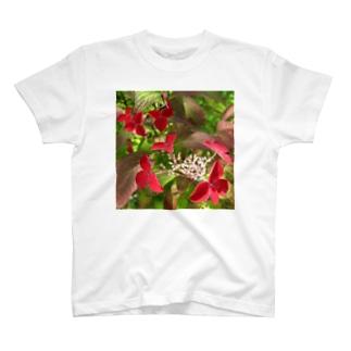紅ヤマアジサイ T-shirts