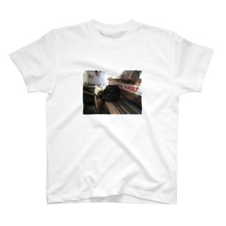 バックパッカーの思い出猫T@UK T-shirts