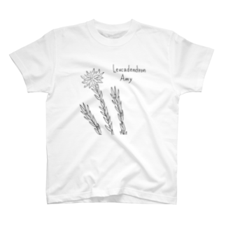 【Botanica】 のLeucadendron Amy T-shirts