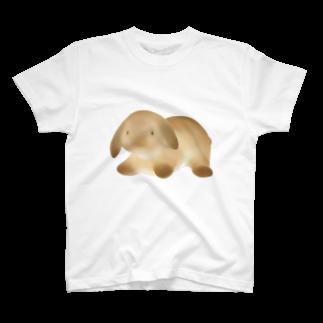 やわらか生き物図鑑のほーらんどろっぷいやー T-shirts
