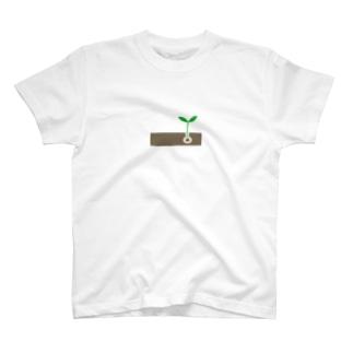 CHLOオリジナル1 T-shirts