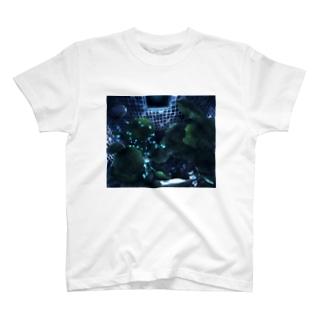 Refrain T-shirts