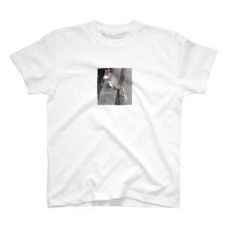 scat_kingramのリスさん T-shirts