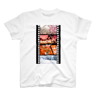 Film in Seasons T-shirts