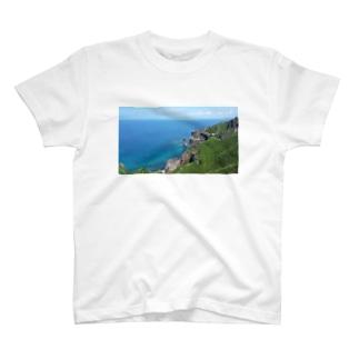 積丹の夏 T-shirts