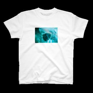 wa_d3300_のにくきゅうくん T-shirts