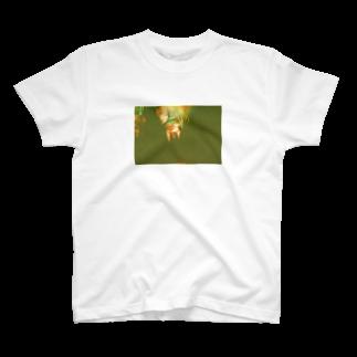 wa_d3300_の薔薇 T-shirts