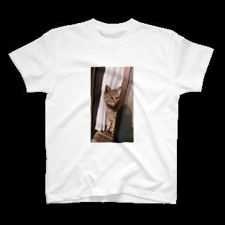 田中徳和の愛猫ミミさん T-shirts