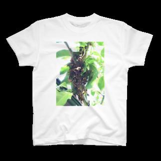 Pakiraの庭の住人 T-shirts