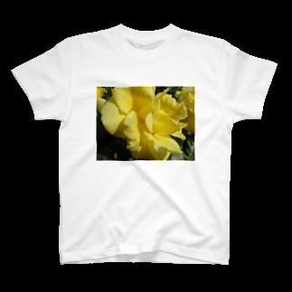 Dreamscapeのイエローな気持ち T-shirts