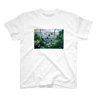 2月、植物園 T-shirts