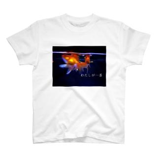 わたしが一番(金魚) T-shirts