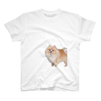 ポメラニアンのランディー 尻隠し T-shirts