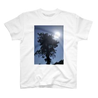 正午の太陽と木 T-shirts