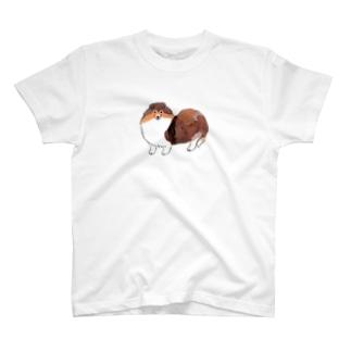 ちら見シェルティ T-Shirt