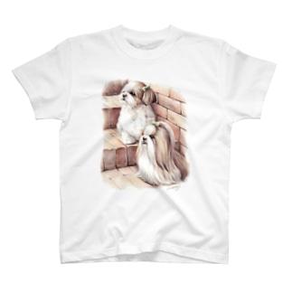 シーズー33 T-shirts