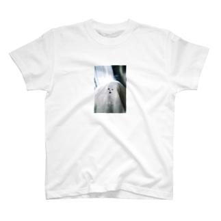 洗濯機から空を仰ぐ念斗くん T-shirts