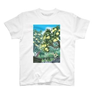 ひみつの花園コラボTシャツ T-shirts