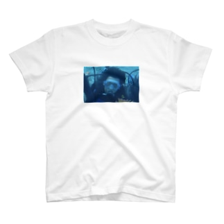 Tobi Diving T-shirts