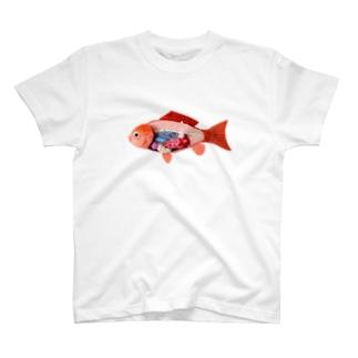解剖錦鯉 T-shirts