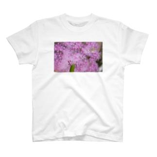 お花見酔いどれワレカラ T-shirts
