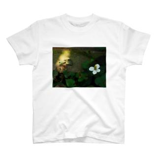 どくだみ DATA_P_122 T-shirts