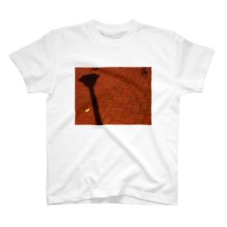 影と葉 DATA_P_125 shadow leaf T-shirts