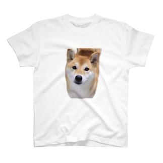 kawaii柴犬 T-shirts