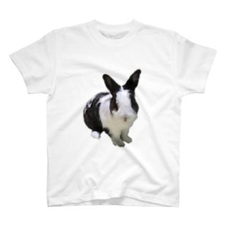 保護うさぎダイちゃんC T-shirts
