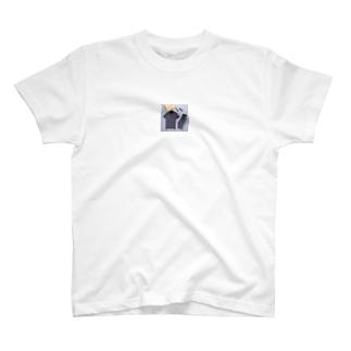 GUCCIセットアップ男性⓪★グッチ上下セット2点 半袖Tシャツと半ズボンの組み合わせ Tシャツ/ショートパンツ コットン送料無料 T-shirts