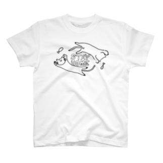 STAY CAT T-shirts