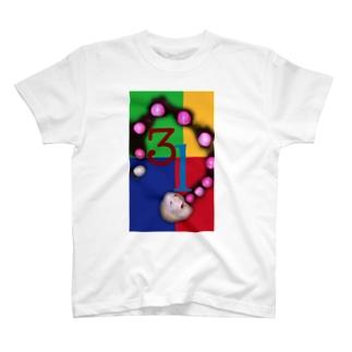 31 T-shirts